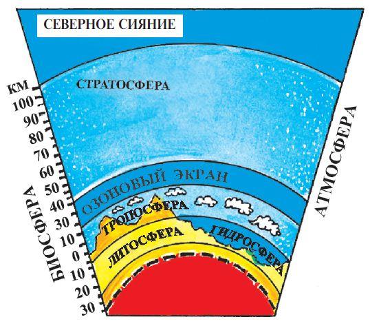 Реферат по теме биосфера 5115